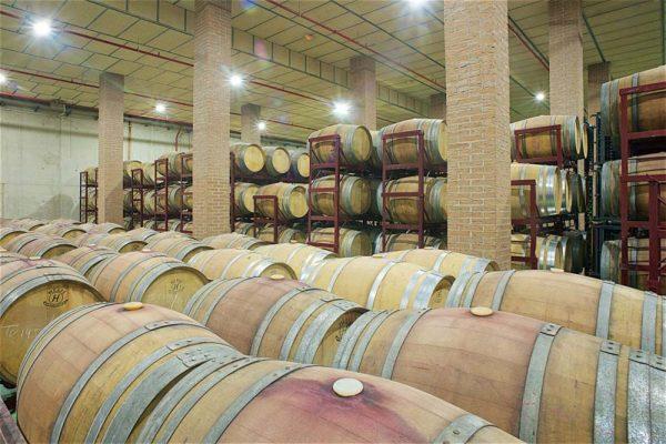 cata-vino-madrid