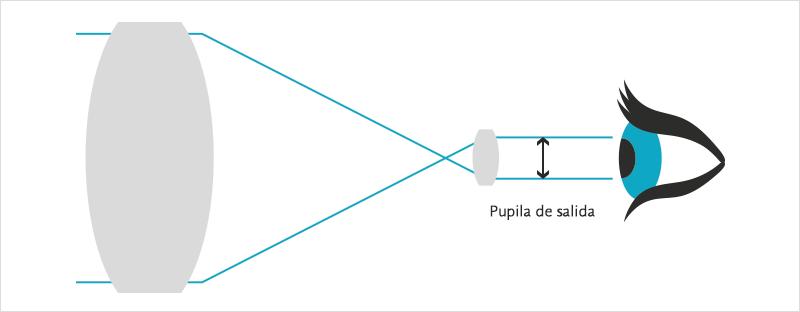 pupila-de-salida