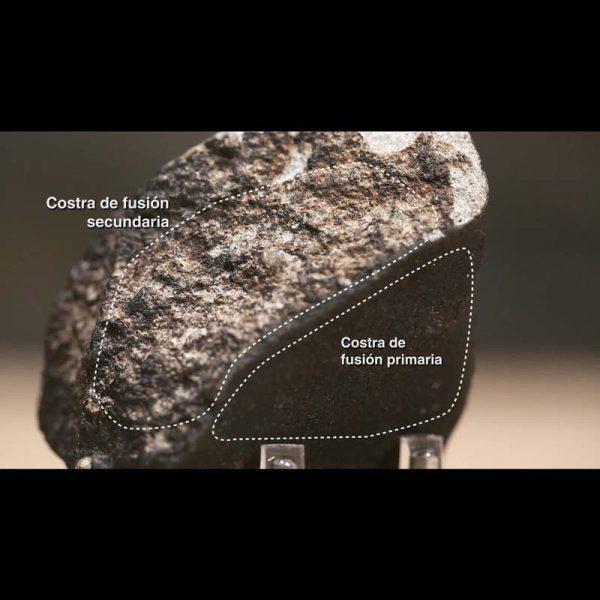 Taller de meteoritos Online